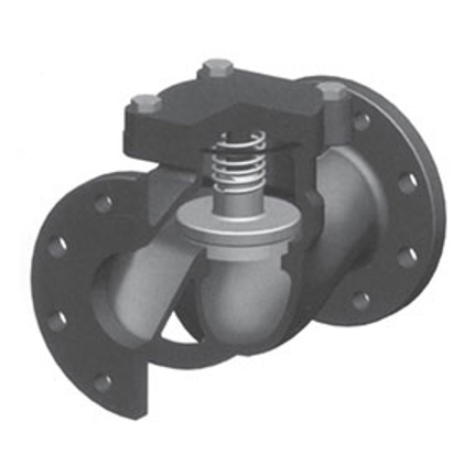 Check Valve With Spring